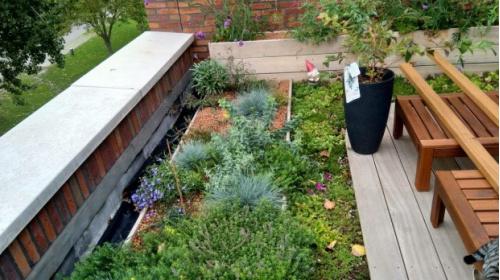 Win een klimaatvriendelijk balkon of dakterras