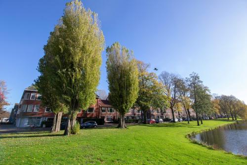 Gemeente ziet bomenkap alleen als allerlaatste optie