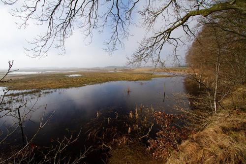 Projecten Nationaal Park Drentsche Aa op interactieve kaart