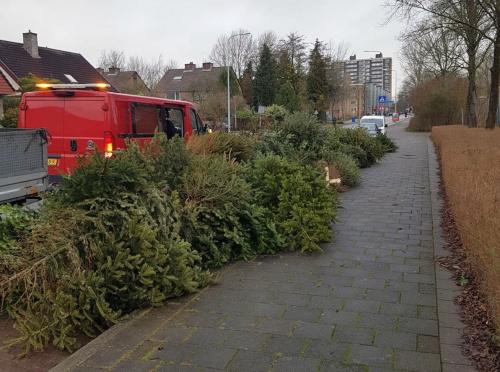 Tussen 4.000 en 5.000 kerstbomen opgehaald in Zuid