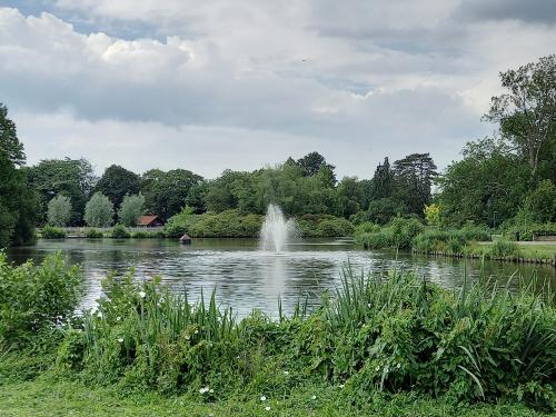 Groot onderhoud Burgemeester Boeremapark